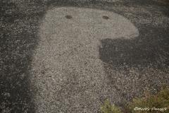 Banal Face