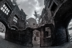 Admiring the Ruins