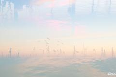 High Sea Fantasy