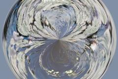 Water Lily Globe