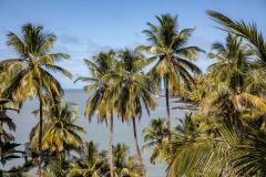 Beauty of the Island